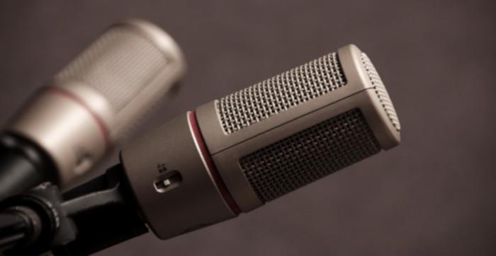 Two grey studio microphones