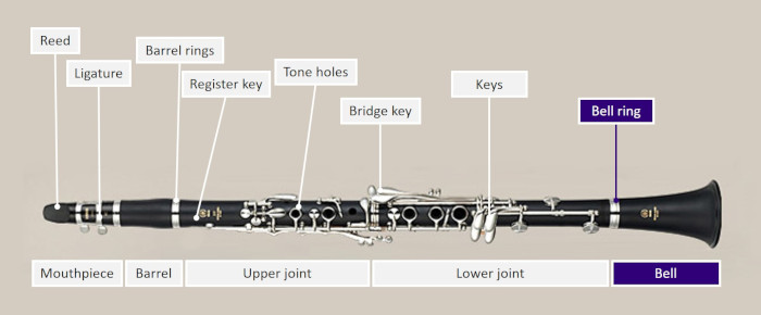 Diagram of a clarinet highlighting bell section and bell ring