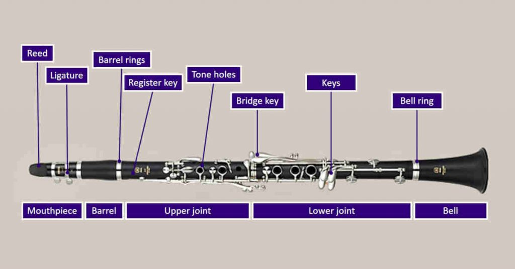 Labeled diagram showing parts of a clarinet on a purple background