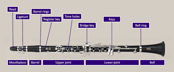 Complete diagram of clarinet parts labeled