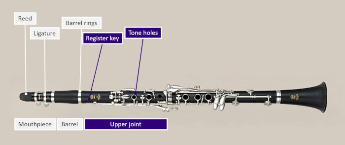 Diagram of a clarinet highlighting upper joint section, including register key and tone holes