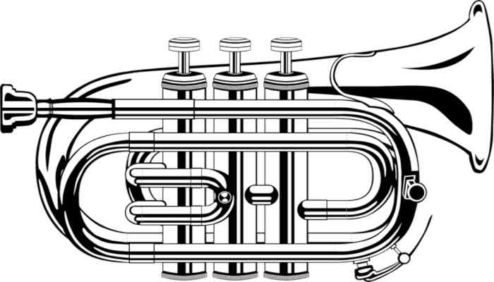 A drawing of a pocket trumpet