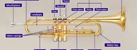 Diagram of a trumpet with parts labeled and highlighted in purple on a grey background