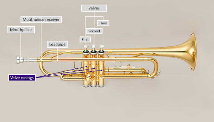 Diagram of a trumpet with parts labeled and valve casings highlighted in purple on a grey background