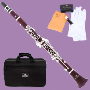 Cecilio CT-380 clarinet with case and accessories on purple background