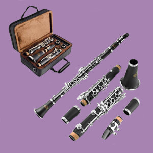 Eastrock Bb clarinet with case and accessories on purple background