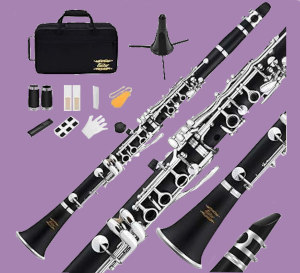 Eastar B-flat clarinet with accessories on a purple background