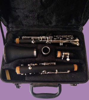 Etude student clarinet model ECL-100 in carrying case on purple background
