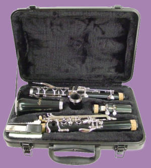 Hisonic Series 2610 Bb clarinet in case on purple background